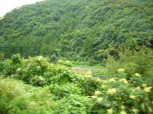 P1340356(この列車各駅停車山口行き。次は船平山).JPG